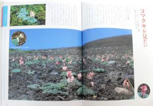 book-tazawako-hananoyama_1