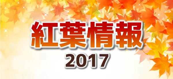 紅葉情報2017