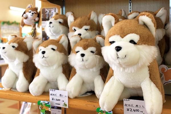 おすわり秋田犬