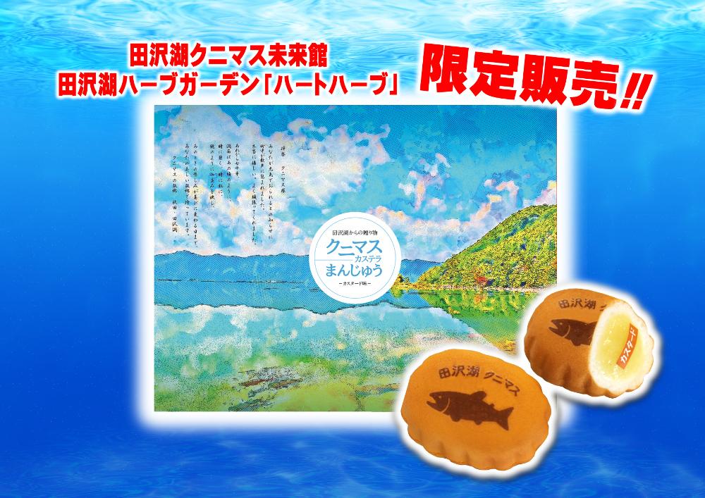 田沢湖クニマスカステラまんじゅう